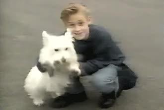 Watch and share Ryan Gosling Puppy GIFs on Gfycat