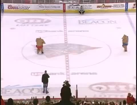Watch Sumo Hockey GIF on Gfycat. Discover more funny, hockey, lol GIFs on Gfycat