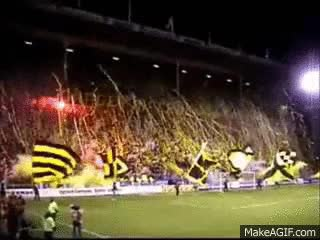 Watch AIK Tifo GIF on Gfycat. Discover more related GIFs on Gfycat