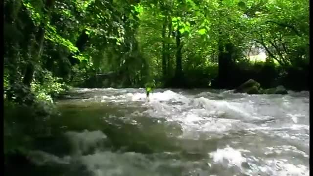 Watch River GIF on Gfycat. Discover more Bach, Bildschirmschoner, Creeck, Fluss, River, Ruisseau, Screensaver, Torrent, Wildbach, Woodland Stream GIFs on Gfycat