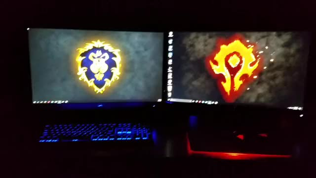 Watch and share For The Alliance Or Horde? GIFs on Gfycat