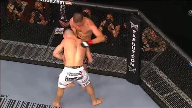 Watch 2018-09-19 09-54-01 GIF by @kevinwilson2332 on Gfycat. Discover more mma GIFs on Gfycat