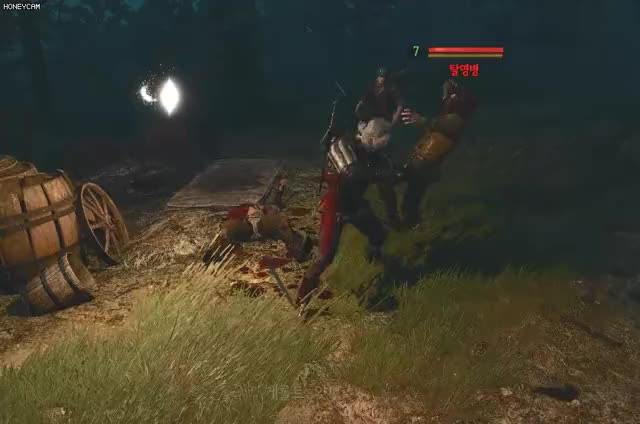 Watch and share Witcher3 GIFs and Blood GIFs by 김기린 on Gfycat