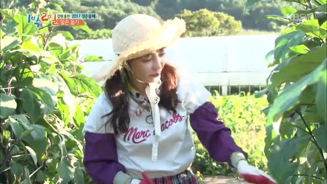 Watch 1박2일 시즌3 2 Days &1 Night-season 3 - 구하라, 김종민 들이댐에 '철벽'. 20171008 GIF on Gfycat. Discover more entertainment, korea, south GIFs on Gfycat
