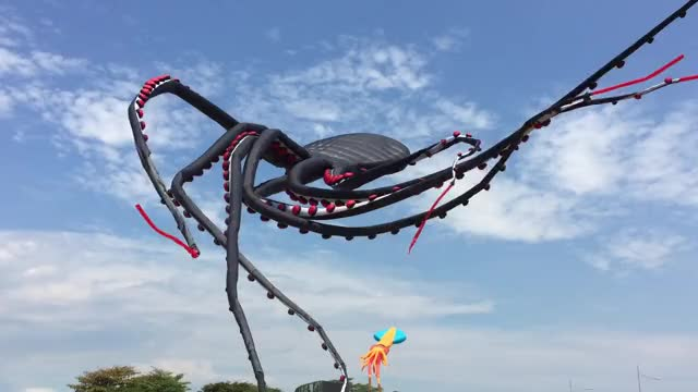 Watch and share Giant Octopus Kite Flying At Marina Barrage GIFs on Gfycat