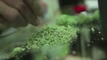 Watch and share Grinder GIFs and Stoner GIFs on Gfycat