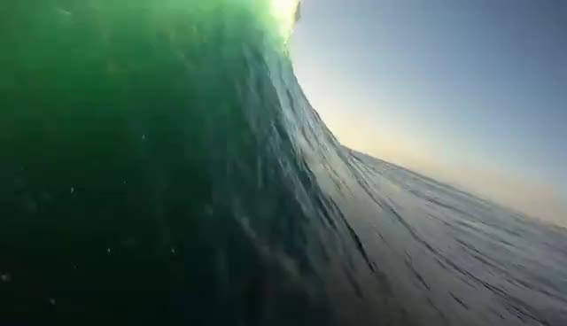 surfing, surfing GIFs