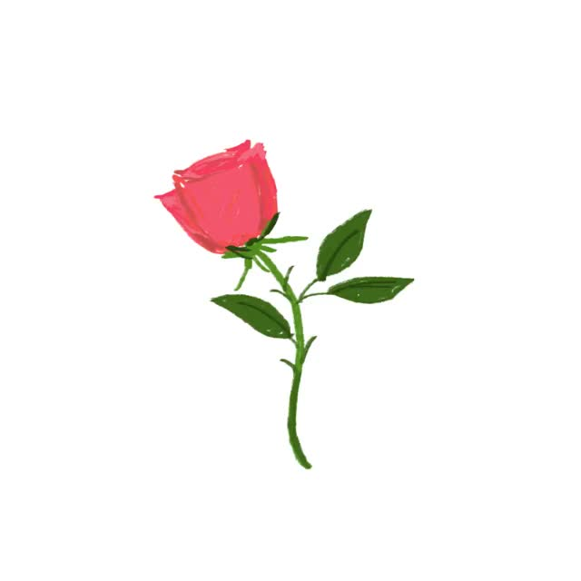 Watch and share Roses GIFs and Rose GIFs by Reactions on Gfycat