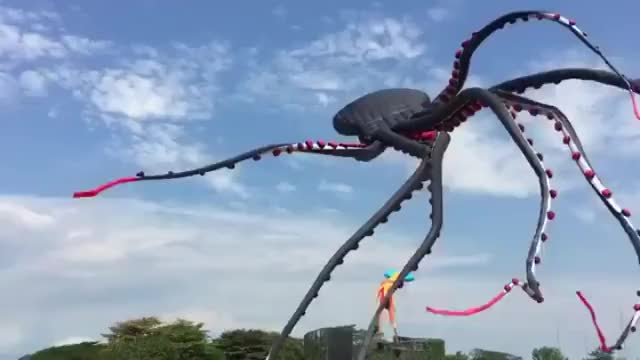 Watch and share Octopus Kite. Awesome. GIFs by HoodieDog on Gfycat