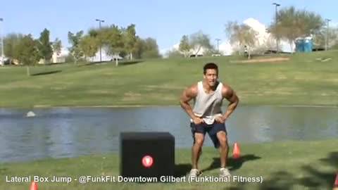 Watch and share Lateral Box Jumps GIFs and Hip Adductors GIFs on Gfycat