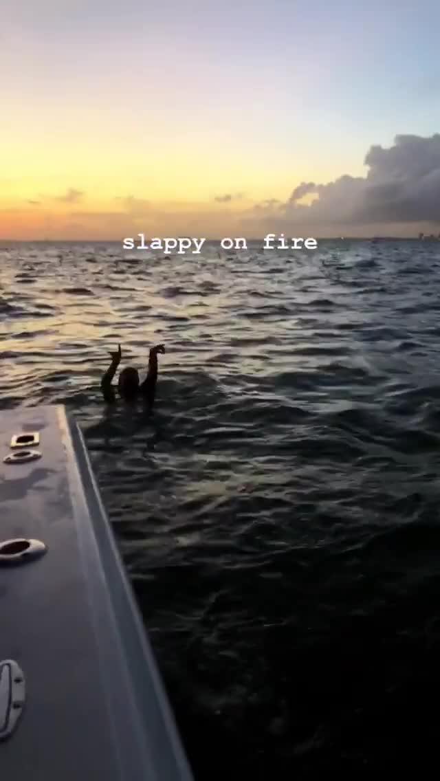 Watch and share Dakota Fanning GIFs and Makeitwayne GIFs by empik48 on Gfycat