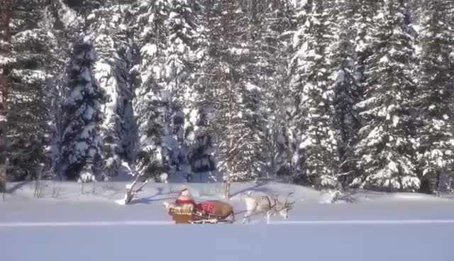 Watch and share Best Of Santa Claus Messages - Father Christmas Lapland Finland Rovaniemi Reindeer GIFs on Gfycat