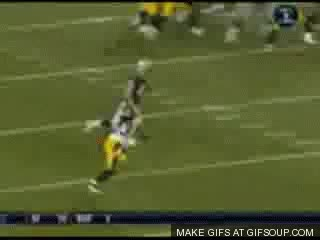Watch and share Pittsburgh Steelers GIFs on Gfycat