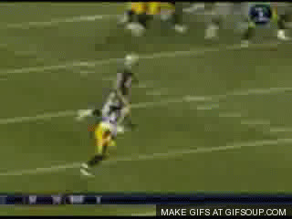 pittsburgh steelers GIFs
