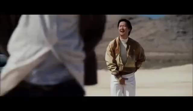 Watch and share Mr Chow GIFs on Gfycat