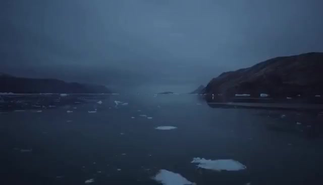 Watch and share Arctic GIFs on Gfycat