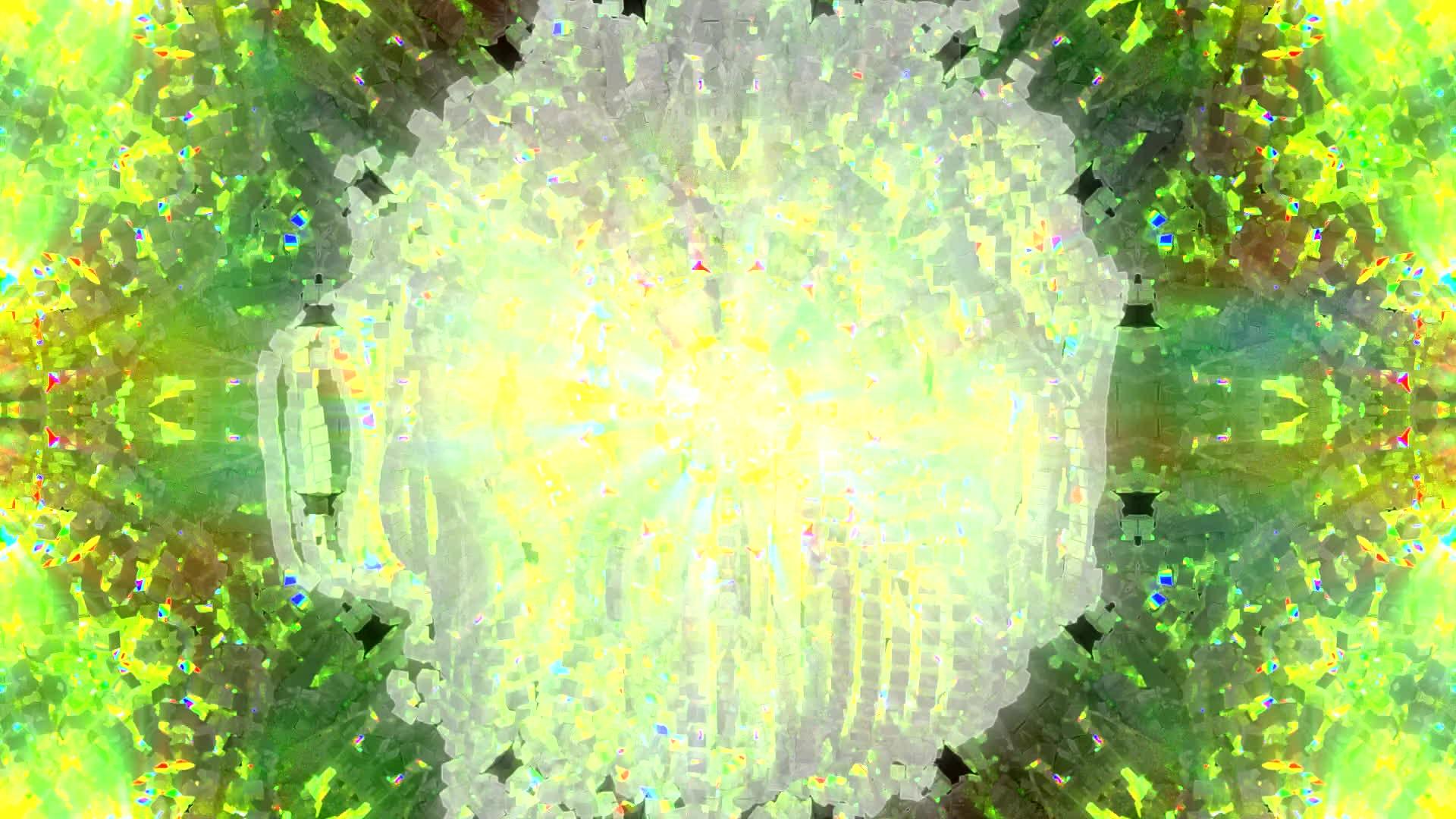 replications, Chrysanthemum GIFs