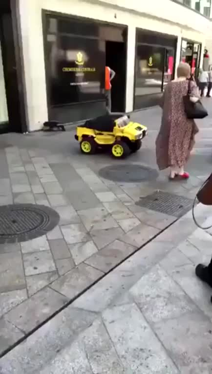 Watch and share Bumble Bee In Real Life GIFs on Gfycat