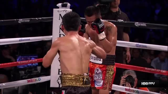 Watch Miura floors Vargas GIF on Gfycat. Discover more Boxing, knockdown GIFs on Gfycat