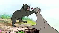 Watch Baloo & Bagheera  requested by Anonymous GIF on Gfycat. Discover more bagheera, baloo, disneyedit, disneygif, request, secondstarnetwork, the jungle book GIFs on Gfycat