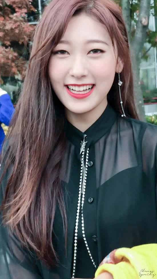 Watch and share Choerry GIFs on Gfycat