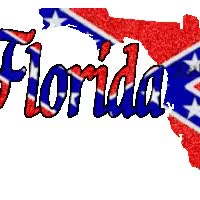 Watch and share Florida Rebel Flag GIFs on Gfycat