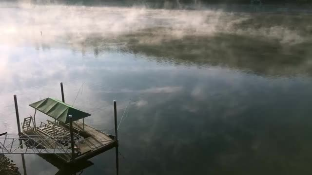 Watch and share Foggy Lake Tulloch GIFs on Gfycat