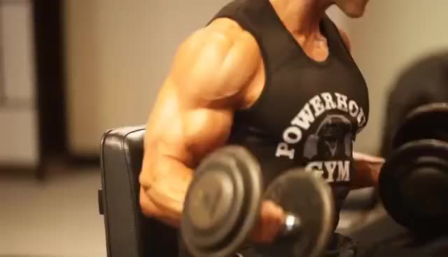 Watch Gym GIF on Gfycat. Discover more gym GIFs on Gfycat