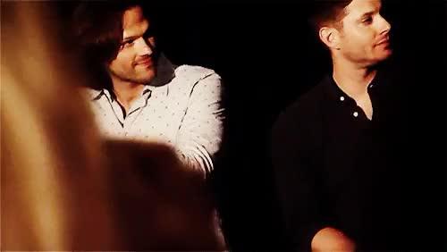 Watch Jensen Ackles Fanpage GIF on Gfycat. Discover more acklesociety, deanwinchester, jaredpadalecki, jensenackles, samwinchester, supernatural GIFs on Gfycat