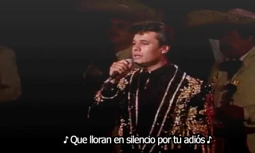 Watch the dreaming fields GIF on Gfycat. Discover more *gifs, Amor Eterno, Juan Gabriel GIFs on Gfycat