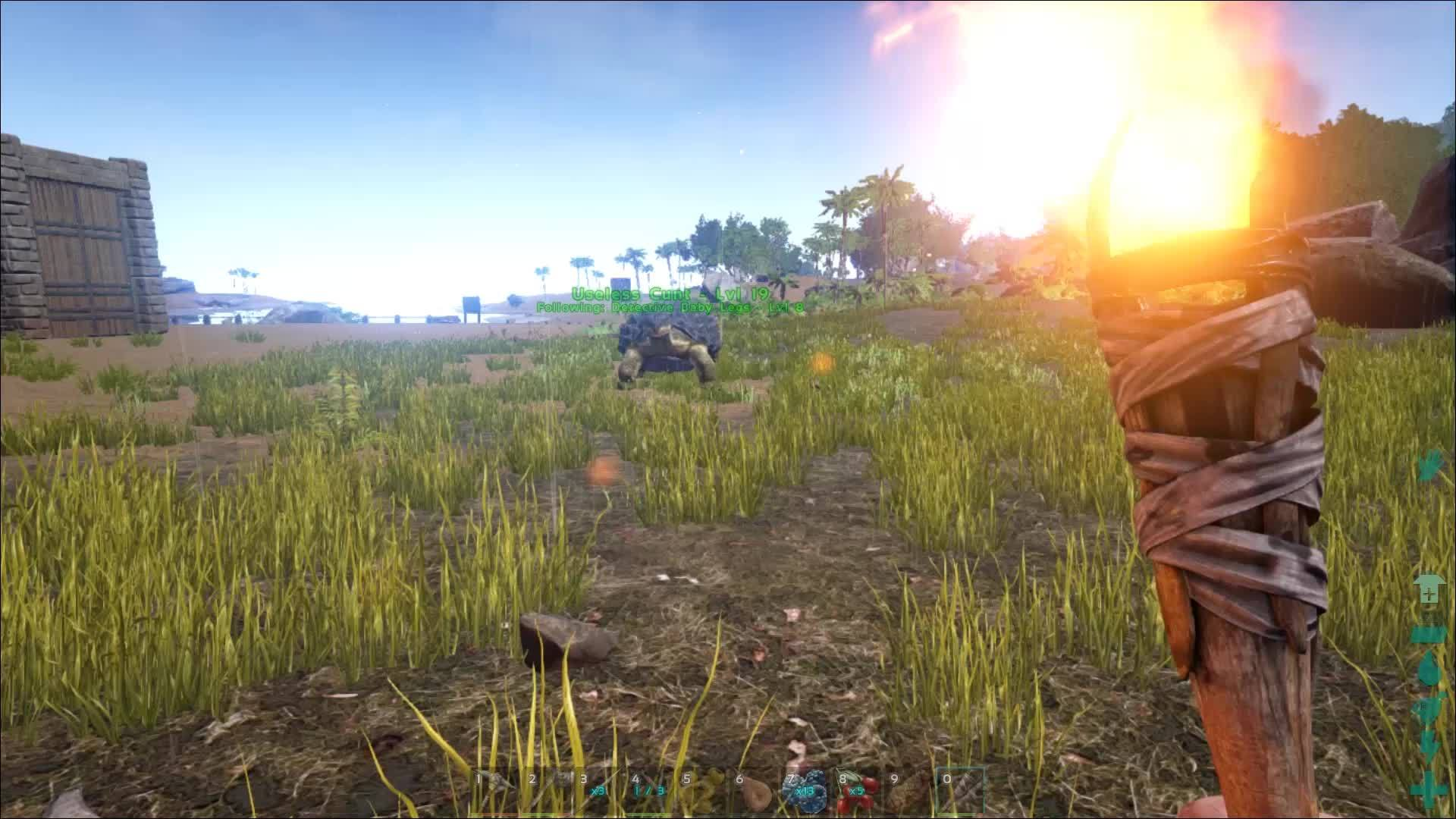 playark, Expect the Unexpected (reddit) GIFs