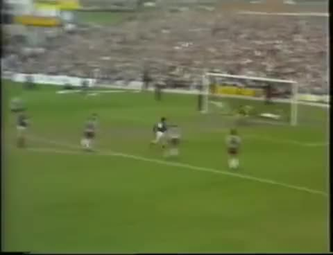 Watch Albert GIF on Gfycat. Discover more Dundee FC, Hearts, Hibs. GIFs on Gfycat