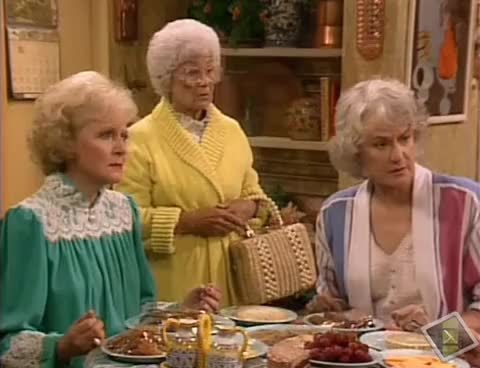 Watch The Golden Girls - The Accurate Conception - Artificial Insemination GIF on Gfycat. Discover more related GIFs on Gfycat