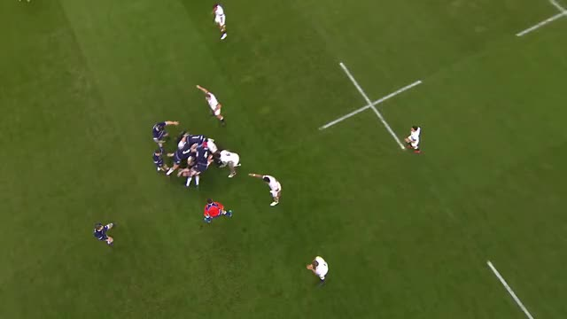 Watch and share Scotland Rugby GIFs and Scottish Rugby GIFs by rimbaud82 on Gfycat