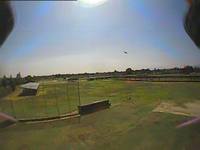 Multicopter, multicopter, Hawk attack GIFs