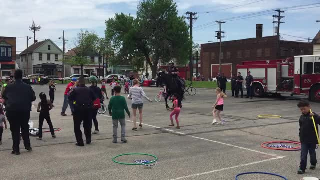 Watch and share If You've Never Seen A Horse Do The Cupid Shuffle Here You Go!! Cleveland Pol... GIFs on Gfycat