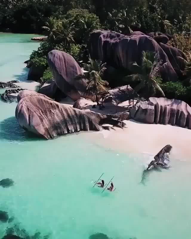 """Watch and share Raw Exploration On Instagram: """"@chelseakauai & @carmellarose In Sync With Paradise🌴⠀ ⠀ >> Video By @everchanginghorizon #ROAM"""" GIFs on Gfycat"""