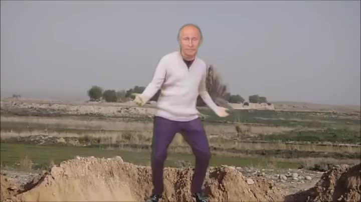 politics, putin, vladimir putin, Sick of Putin up with your shit GIFs