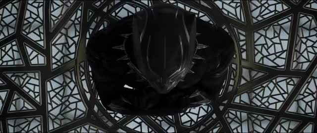 Watch this black panther GIF on Gfycat. Discover more Black Panther, Marvel, Okoye, TChalla, black panther, captain america: civil war, king t'challa, marvel, okoye, t'challa, tchalla, wakanda, wakanda forever GIFs on Gfycat