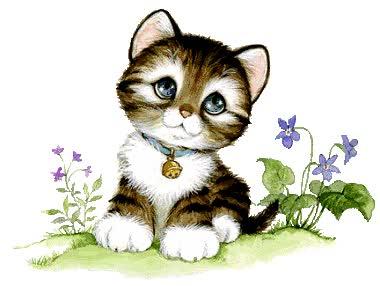 Watch and share Imágenes Con Movimiento De Gato animated stickers on Gfycat