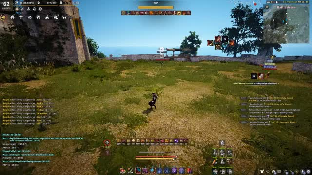 Watch and share BDO GIFs by hakumii on Gfycat