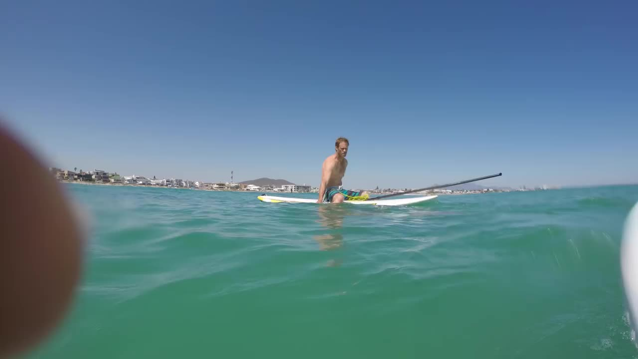 Giant squid wraps its tentacles around my paddle board! GIFs