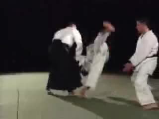 Excellent Aikido Demonstration GIFs