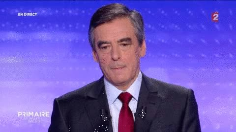 Watch and share Fillon Francois animated stickers on Gfycat