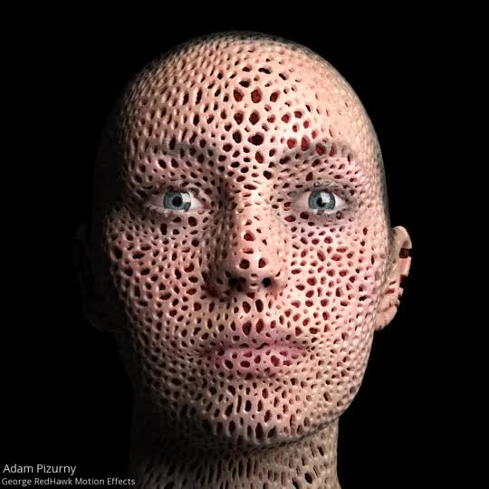 Watch and share Trypophobia GIFs on Gfycat