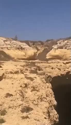 Watch WCGW Leap of Faith GIF on Gfycat. Discover more related GIFs on Gfycat