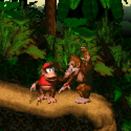 Donkey Kong Country: Donkey Kong (the large ape) and Diddy Kong (the smaller monkey)