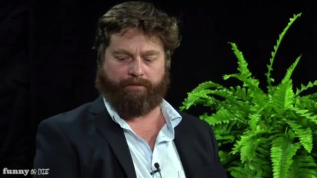 Watch and share Between Two Ferns With Zach Galifianakis GIFs and Bruce Willis GIFs by Funny Or Die on Gfycat