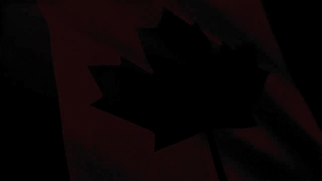 canada, canada day, CANADA  FLAG WAVING - FULL HD - GIFs