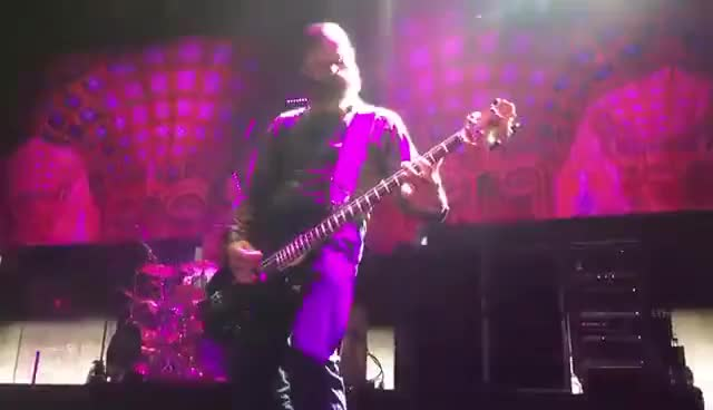 """Watch and share Tool """"Parabola"""" - Justin Chancellor Plays Bass Solo GIFs on Gfycat"""